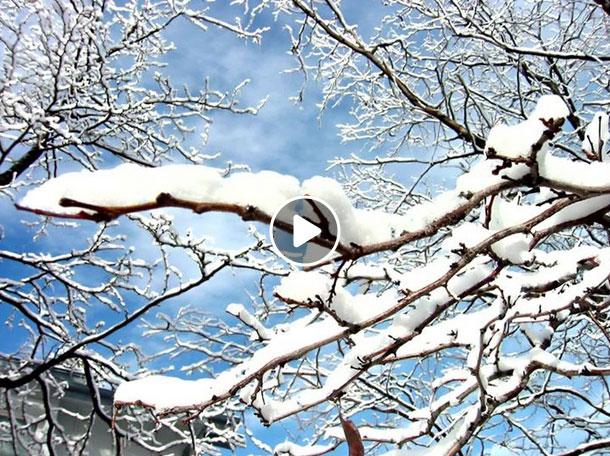Svatomartinský voiceband - video